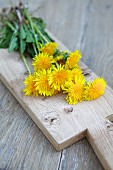 Dandelion flowers on cutting wooden board (close-up)