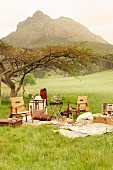 Elegant picnic equipment and colonial-style chairs in meadow with view of mountain