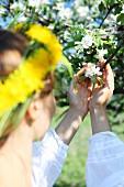 Junge Frau mit Löwenzahnkranz im Haar beim Betrachten der weissen Blüten eines Apfelbaums