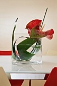 Red flamingo flower and green leaf arranged in glass vase on white frosted glass table top surrounded by red and white shell chairs