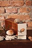 Steine und verschiedene Schneckenhäuser auf gestapelten Kisten vor rustikaler Ziegelwand