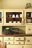 Primulas in small nest of birch twigs on 50s-style, cream kitchen dresser