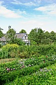 Farmhouse with large garden