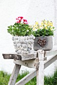 Scented pelargonium and horned violets in planters decorated in various ways