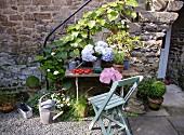 Pflanzentöpfe auf rustikalem Holztisch mit Stuhl vor Aussentreppe an Naturstein Hauswand