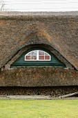 Thatched roof of residential house (detail)