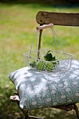 Garden chair with cushion & apples in basket