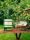 Apfelwein mit Apfelpresse und frischen Äpfeln auf Gartentisch