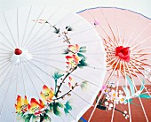 Hand painted asian umbrellas