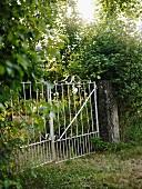 A gate in a garden