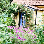 A summer cottage with a lot of plant and flowers
