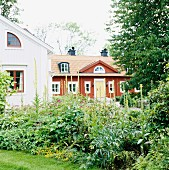 View across herbaceous border in garden to traditional Swedish house with red weather boarding