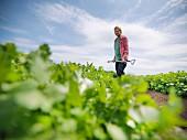 Woman looking at crops
