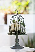 Vintage bird cage decorated with white roses