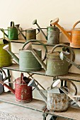 Rusty vintage watering cans on old step shelf