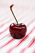 One cherry with stem on red and white striped cloth