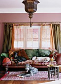 Several dogs lying comfortably on sofa and rug in front of window in traditional interior