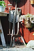 Vintage gardening equipment and plant pot hanging on rust red wooden wall
