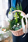 Person holding basket planted for Christmas
