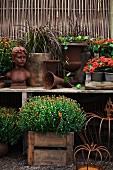Bust, planters & flowering plants on table in garden