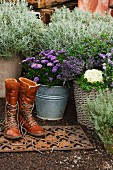 Autumnal planters in entrance area with boots on doormat