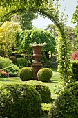 View through climber-covered archway into garden with antique-style urn planter on plinth and box balls