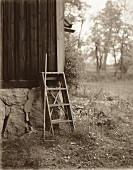 Ladder and rake by summer house (B&W)