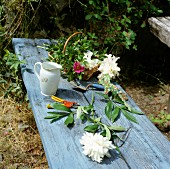 Flowers on a bench in a garden.