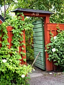 Green garden gate and red portal in climber-covered wooden fence