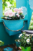 Basket of flowers on blue-painted wall