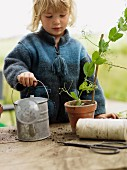 Little girl with watering can & potted plan on potting table in garden