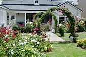 Lavishly blooming garden with flower beds and rose arches