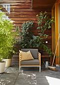 Polsterstuhl umringt von üppigen Topfpflanzen vor Holzwand