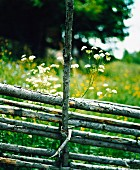 A wooden fence in front of a meadow.