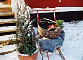 A kick-sled with a basket in front of a house.