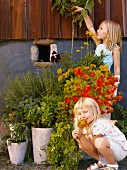 Two girls by potted plants.