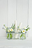 Glasses filled with grape hyacinths, bellis and names written on rolls of paper