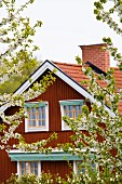 Red, Nordic wooden house with flowering apple trees in foreground