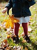 Kleines Mädchen mit Laubblatt in der Hand