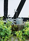 Metal watering cans in mossy stone trough against half-timbered facade