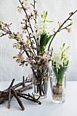Spring arrangement of blossoming cherry twigs & hyacinths