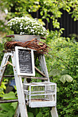 Old stepladders in garden decorated with chalkboard, flowers and birdcage