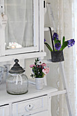 Antique storage jar and posy of pink ranunculus on shabby chic dresser and pot of blue hyacinths hanging on ladder