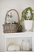 Still-life arrangement in country-house kitchen with basket, house plant and empty screw-top jar on white shelves