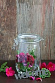 Pelargonium flowers in preserving jar and welcome sign