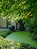 Garden area with astro turf