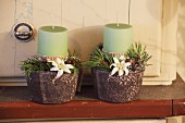 Green candles, branches and edelweiss in small pots