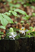 Crocheted toadstools in jars on mossy tree stump