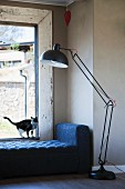 Cat on daybed below window next to retro standard lamp