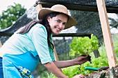 Frau pflanzt Salat
